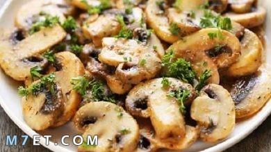 Photo of أشهر ٧ اكلات بالفطر يمكن تحضريها بالمنزل