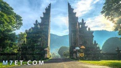 Photo of أشهر وأفضل الأماكن السياحية في بالي
