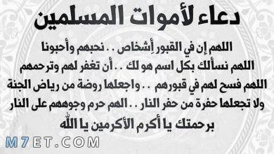 Photo of فضل الدعاء للميت ونصوص لأفضل الأدعية للمتوفي