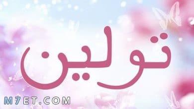 Photo of معنى اسم تولين بالعربي