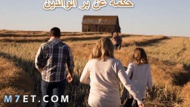 Photo of حكمة عن بر الوالدين وعبارات جميلة عن الوالدين للواتس