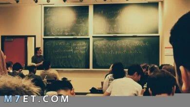 Photo of طريقة عمل جدول مدرسي جاهز