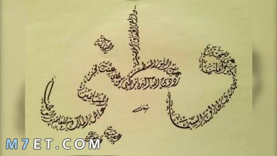 Photo of 10 عبارات عن الوطن العزيز