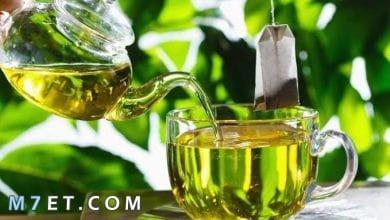 Photo of أبرز فوائد الشاي الاخضر للصحة