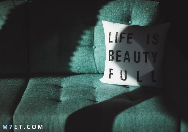 كلام عن الحياة