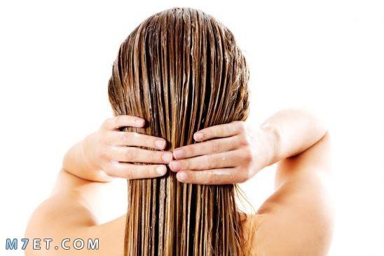 وصفات لعلاج الشعر