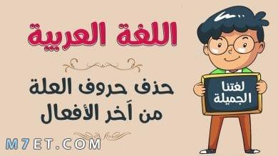 Photo of حروف العلة في اللغة العربية