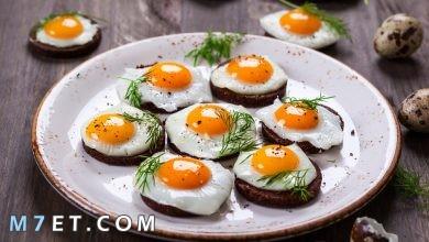 Photo of افضل 5 اطباق بالبيض شهية ومتنوعة