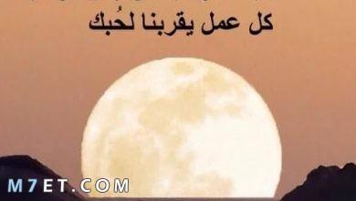 Photo of حكمة الصباح ليوم مليء بالتفاؤل والأمل
