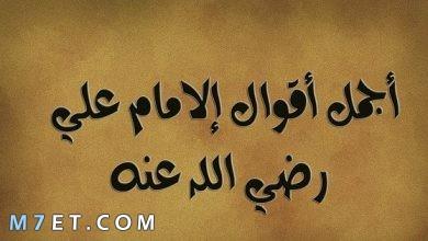 Photo of حكم الامام علي عن الحياة