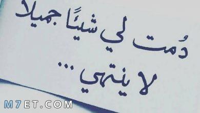 Photo of كلمات عن الحب ما أجملها حين تنطق من قلب صادق وحنون