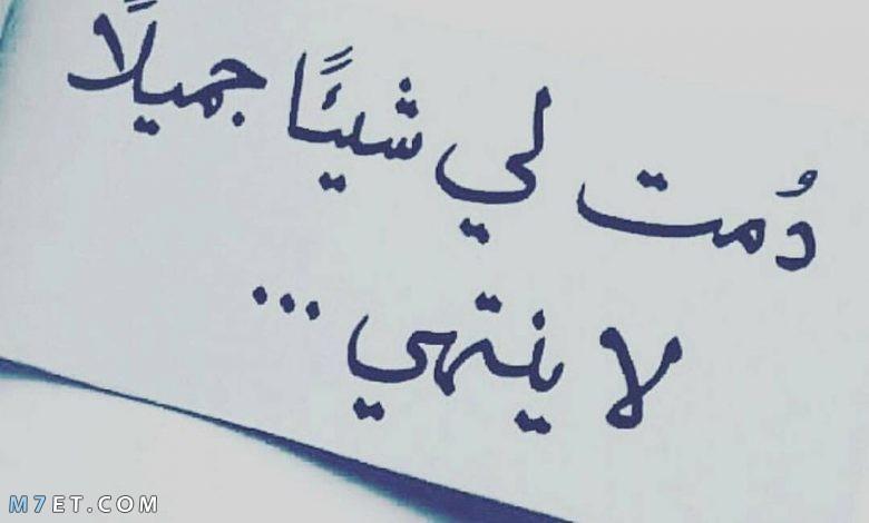 كلمات عن الحب ما أجملها حين تنطق من قلب صادق وحنون