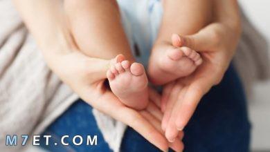 Photo of بحث عن تربية الطفل من الألف إلى الياء