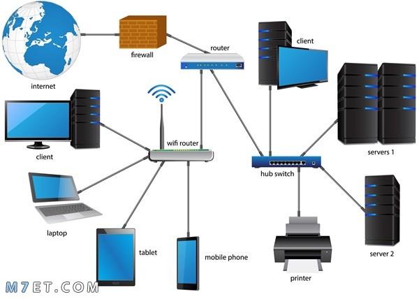 انواع الشبكات