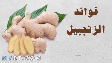 Photo of فوائد الزنجبيلللتخسيس والقلب وطرق استخدامه