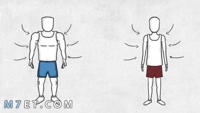 Photo of انواع العضلات لكمال الأجسام ووظائفها