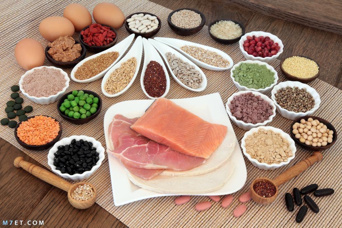مكونات البروتين