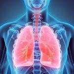 اسباب التهاب الرئة عند كبار السن بالتفصيل وافضل 7 اعشاب للعلاج