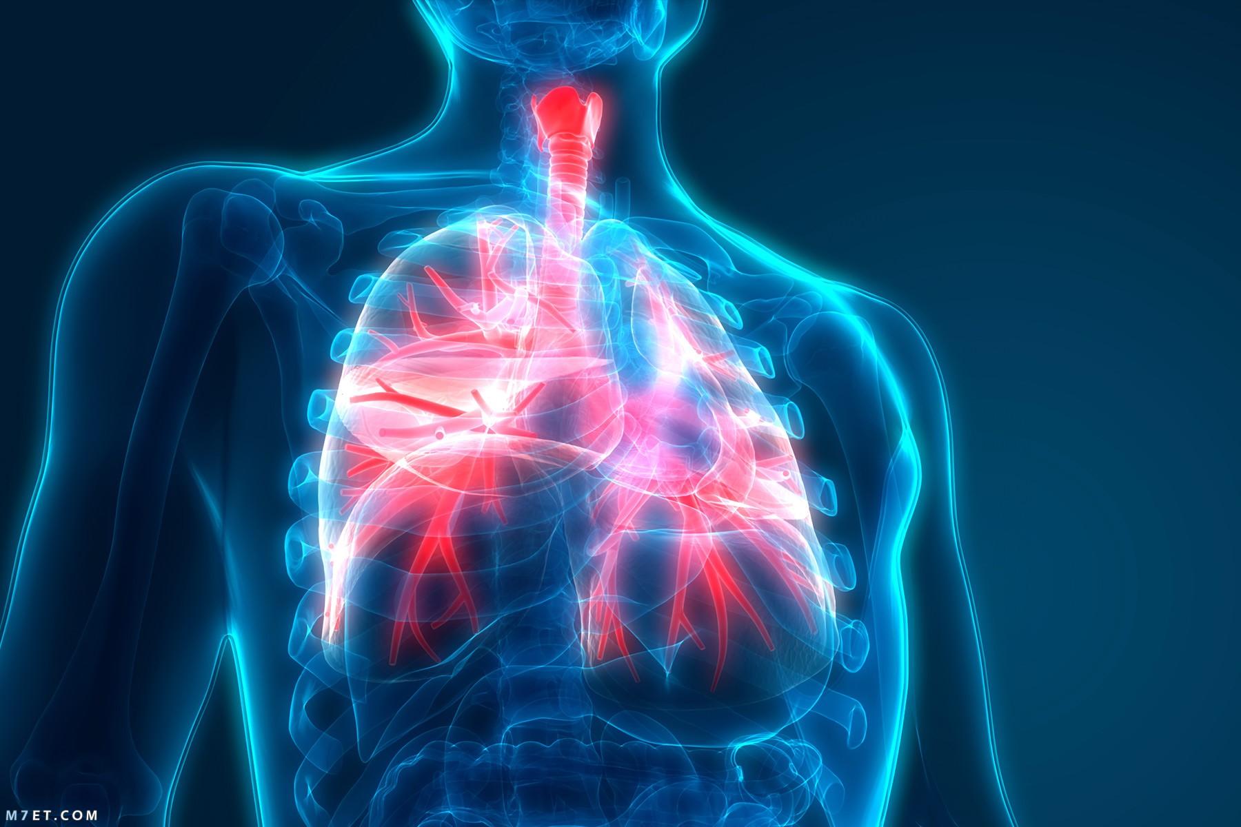 اسباب التهاب الرئة