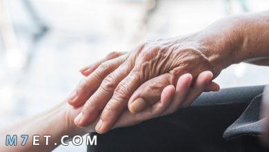 Photo of اليوم العالمي للمسنين- 8 أفكار للاحتفال باليوم العالمي للمسنين