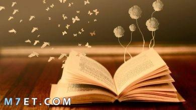 Photo of القراءة والكتابة وأهميتها للفرد والمجتمع