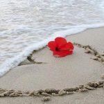 عبارات جميلة عن الحب : 100 عبارة مؤثرة