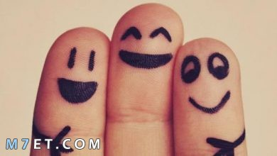Photo of عبارات جميلة عن الصداقة – أكثر من 100 عبارة للأصدقاء المقربين