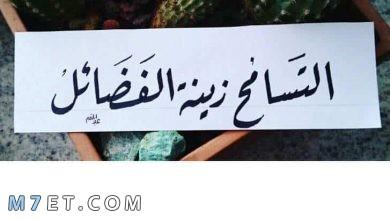 Photo of عبارات عن التسامح ترفع من قدر نفسك ومحبتك بين الناس