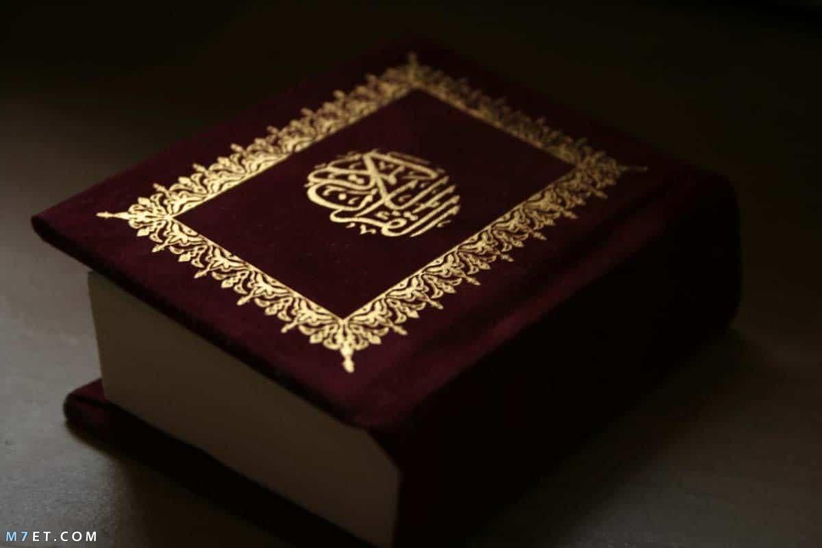 كم عدد آيات القرآن