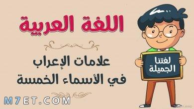 Photo of شرح مفصل لـ الأسماء الخمسة ونماذج إعرابية لها