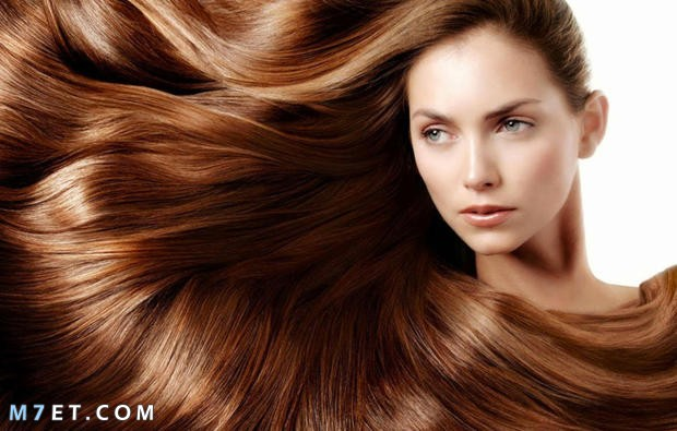 انواع الشعر