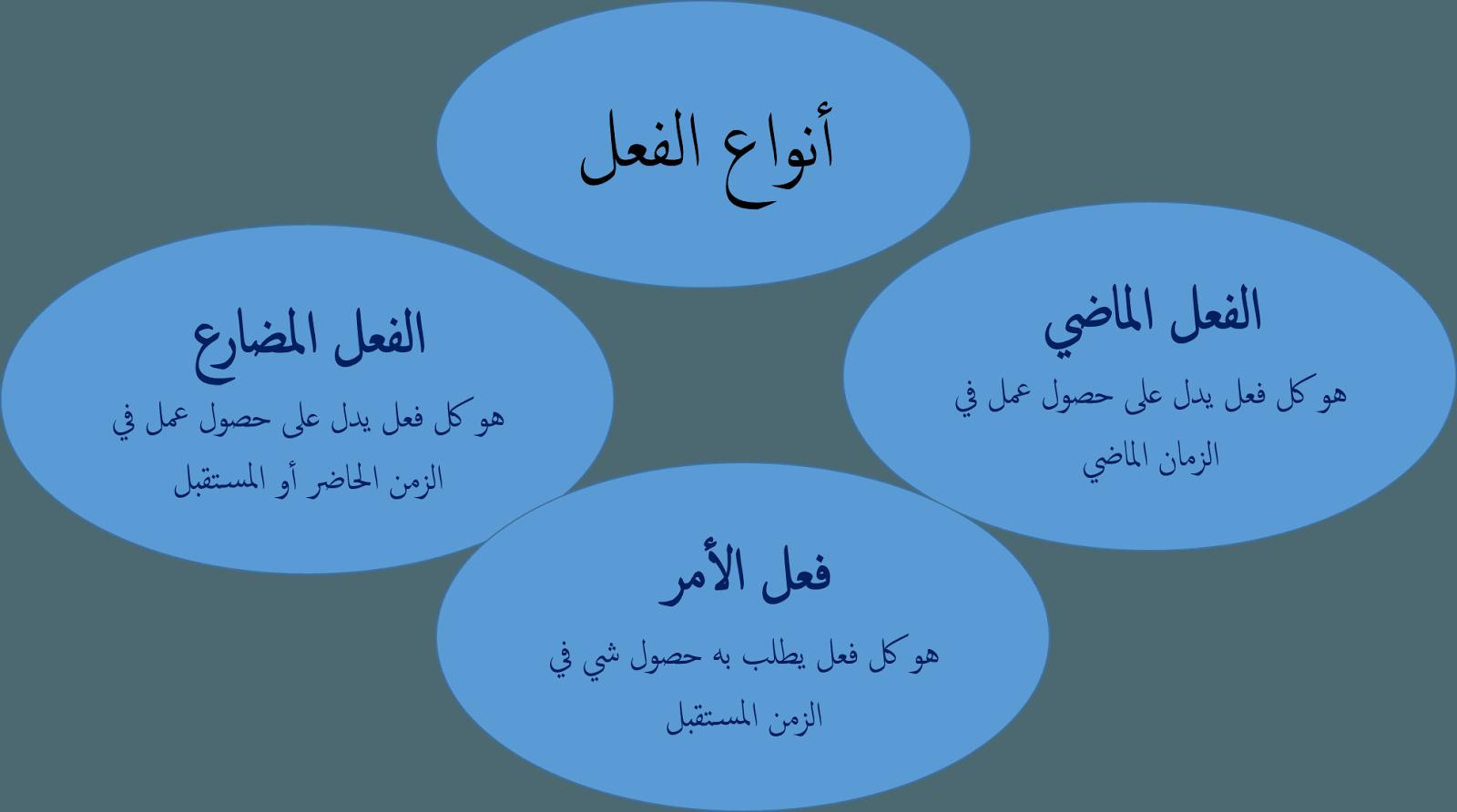 انواع الفعل المضارع