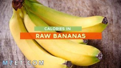 Photo of عدد السعرات الحرارية في الموز: 12 فائدة ضرورية للجسم ورجيم الموز الفعال