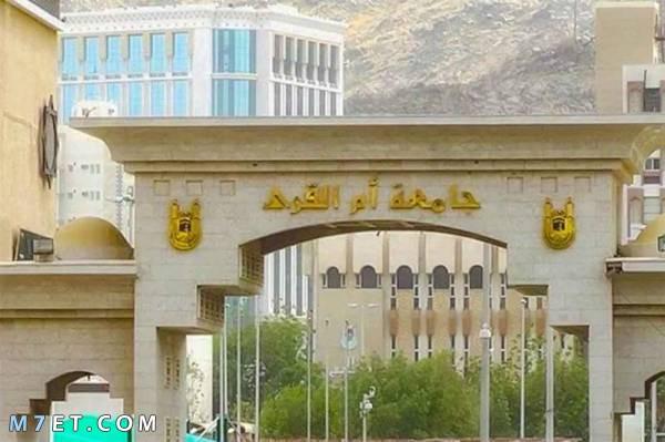 اقل نسبه تقبلها جامعة ام القرى 7 خطوات للتسجيل إلكترونيا في جامعة ام القرى