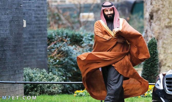 إنجازات المملكة العربية السعودية