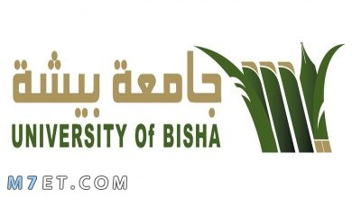 Photo of بلاك بورد جامعة بيشه الرسمي