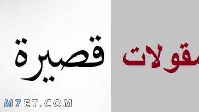 Photo of +200 حكمة اليوم قصيرة تبث الحكمة للقلوب مكتوبة
