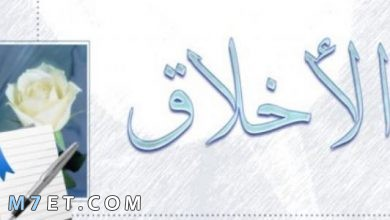 Photo of 50+ حكمة عن الأخلاق ترتقي بك إلى عنان السماء