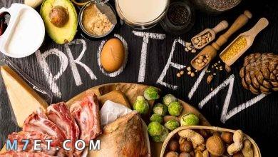Photo of رجيم البروتين للتخسيس: اخسري 6 كيلو من وزنك في اسبوعين