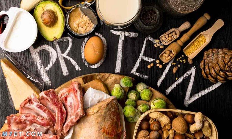رجيم البروتين للتخسيس: اخسري 6 كيلو من وزنك في اسبوعين