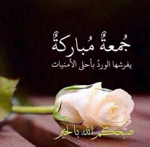 Pin By تدبروا القرآن الكريم 3