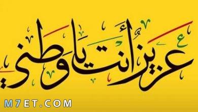 Photo of عبارات عن الوطن قصيرة جدا تشد العزيمة للدفاع عنه