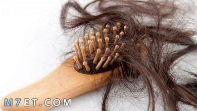 Photo of بحث عن تساقط الشعر متكامل | طرق مكافحة تساقط الشعر مجربة