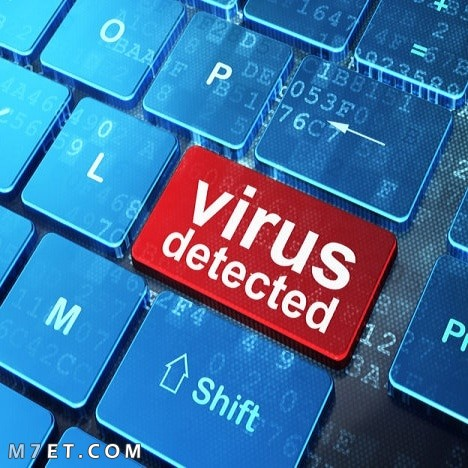 بحث عن فيروسات الحاسب
