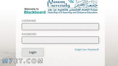 Photo of رابط البلاك بورد جامعة القصيم : 10 خطوات فقط لتسجيل الدخول