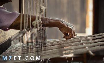 Photo of ماذا يطلق على صانع الحرير لن يصدق عقلك