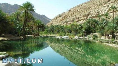 Photo of السياحة في عمان 2021 | أبرز 4 أنواع للسياحة في عمان