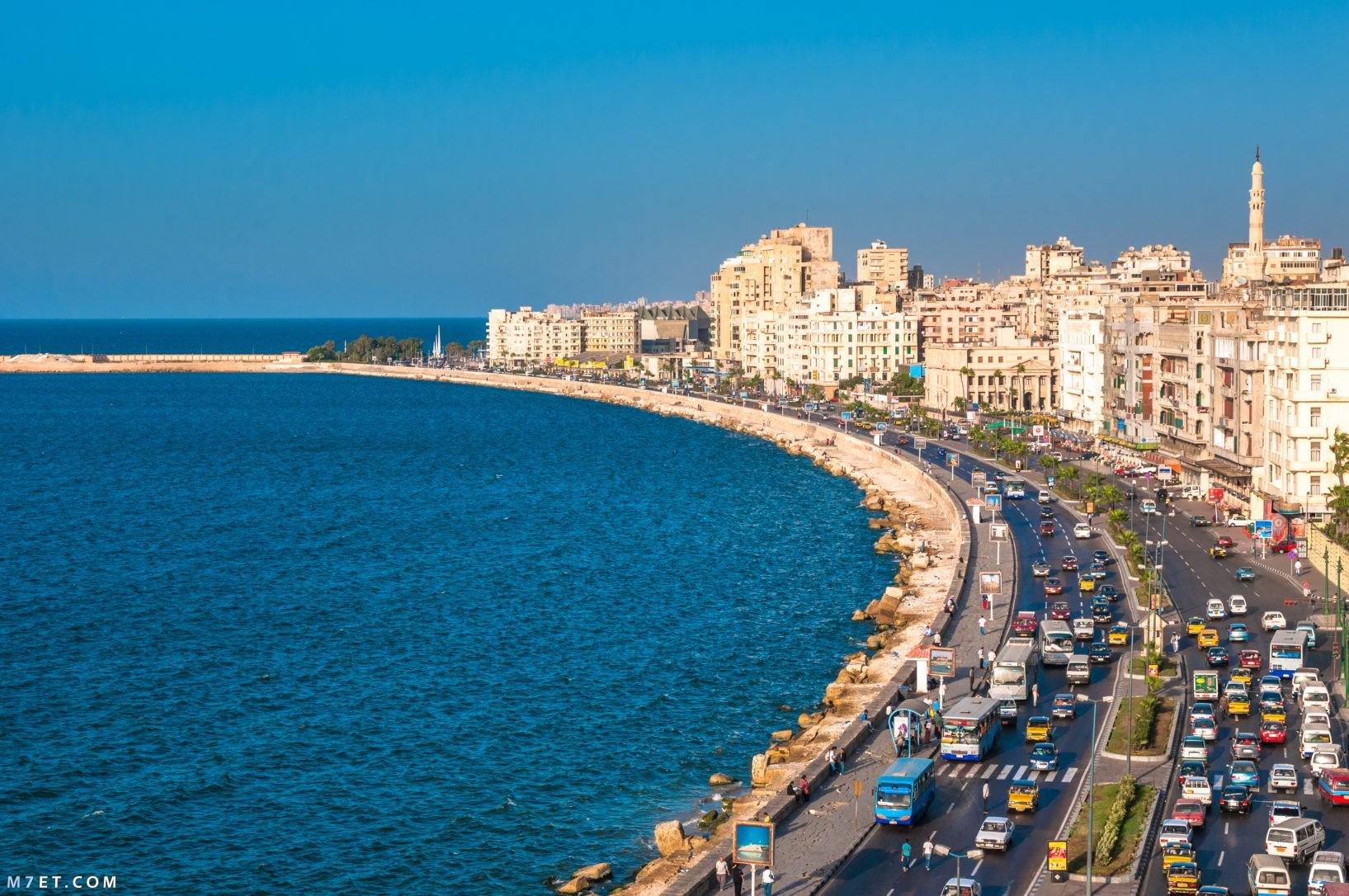 اجمل ما في مصر