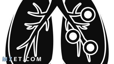 Photo of احتقان الرئة بـ 4 أعشاب طبيعية فعالة ومجربة