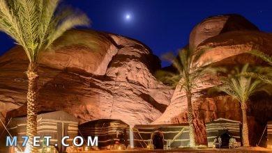 Photo of افضل اماكن السياحة في جدة | أفضل 4 مطاعم في جدة